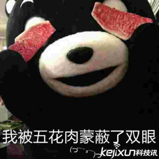 现实版熊出没 吃货熊溜进东京餐厅偷东西