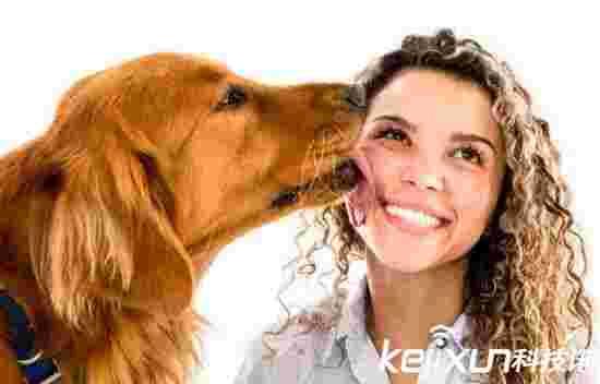 狗狗表达爱意的方式 你知道几个
