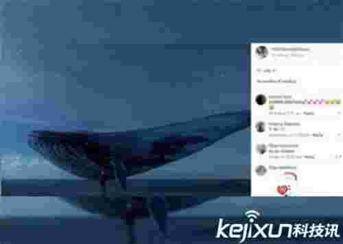 死亡游戏潜入中国蓝鲸游戏是什么俄罗斯蓝鲸游戏50指令