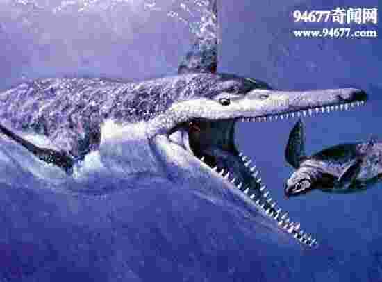 盘点十种怪异的灭绝动物,旋齿鲨如同巨型绞肉机