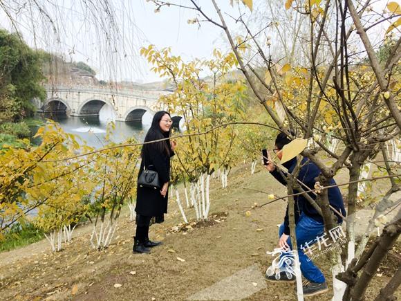 白天赏腊梅晚上看彩灯 市民在重庆园博园开启拍照模式