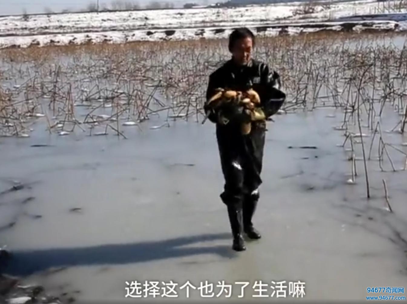 大叔零下-4℃结冰泥潭里,不断怒砸冰块,无奈的称是为了生活