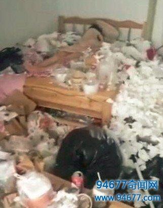 恶心!女房客五个月没出门,房东担心出事破门而入,下一秒被惊呆