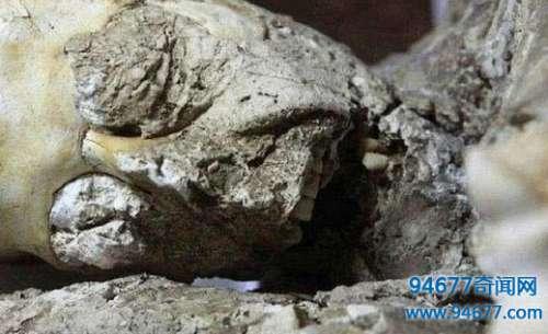 考古学家在挖掘现场发现一个石化岩,清理干净后让人目瞪口呆