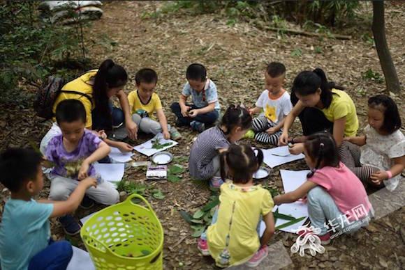 让幼儿教育回归自然 重庆有一所森林幼儿园