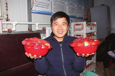 """广平:昔日打工仔 今朝""""草莓王"""""""