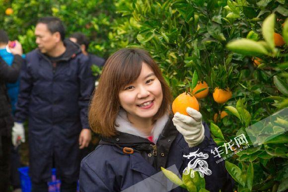 剑桥学霸回乡创业 她立志做农业现代化的耕耘者