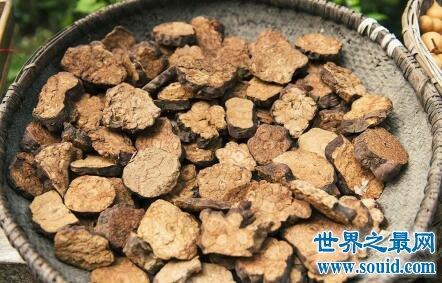 男人补肾最佳食物 为了面子增么能不吃这些(www.souid.com)