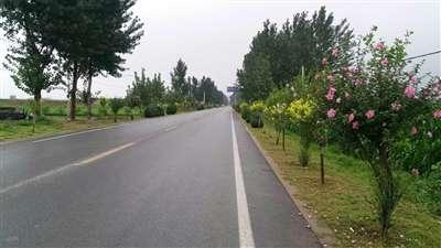 魏县:143个贫困村村村通了扶贫路