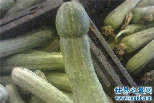 黄瓜门事件详细情况,大力出奇迹(www.souid.com)