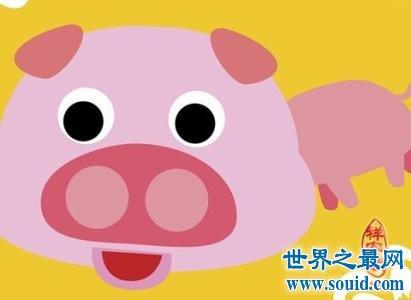 风水大师给你指点属猪的和什么属相最配(www.souid.com)