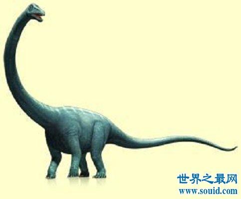 地球上诞生的最大的恐龙你了解多少(www.souid.com)