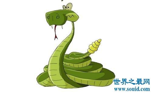 风水大师给你指点属蛇的和什么属相最配(www.souid.com)