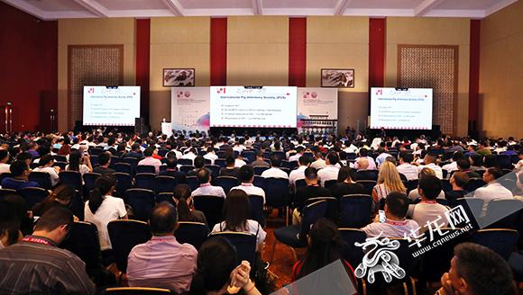 世界级会议在渝召开 全球五千多名专家探讨生猪健康技术