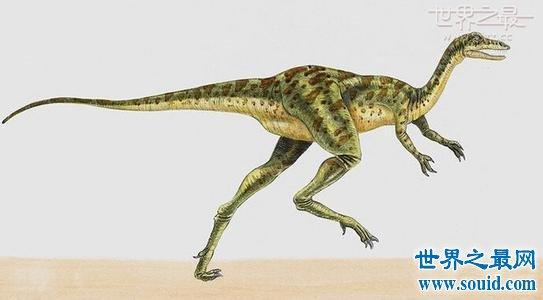 史上恐龙之最,让大家见识各种奇异的恐龙(www.souid.com)