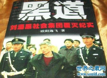 刘涌黑社会集团覆灭纪实是什么摧毁了他