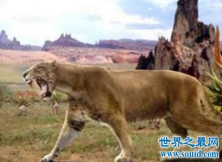 异剑齿虎古代的一代霸王却敌不过灭绝(www.souid.com)