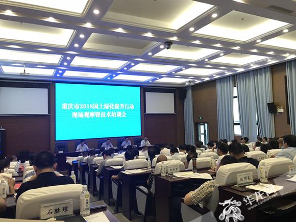 重庆市完成营造林287.2万亩 已超年度目标任务一半