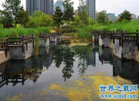 郑州有什么好玩的地方给你一个难忘的经历(www.souid.com)