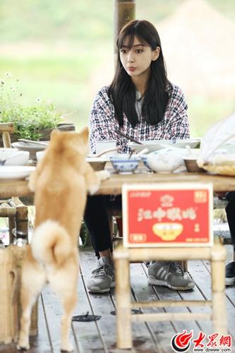 《向往生活》Angelababy亮相蘑菇屋 一起感受夏日田间的风