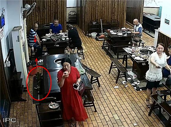 """火锅店聚餐时钱包不翼而飞 """"嫌疑犯""""原来是只狗"""