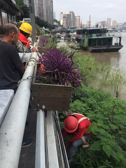 洪水过境前 重庆拆除两江四岸堤岸灯饰9600余套