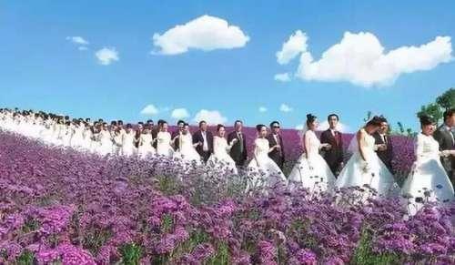 邯山区首届户外公益集体婚礼报名啦,给她一场别样的婚礼吧