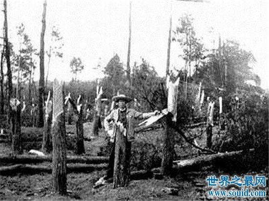 空中怪车事件,1994年贵阳工厂员工被吸离地面几米(www.souid.com)