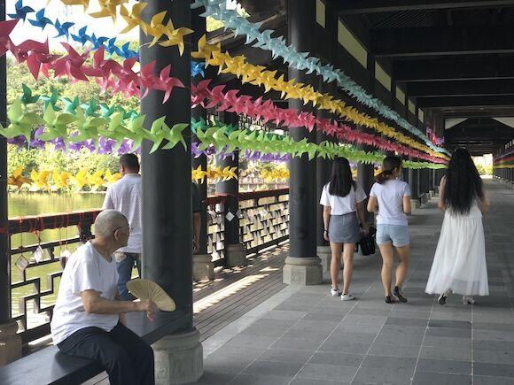 走纳凉隧道赏风车廊桥 来重庆园博园开启盛夏清凉之旅