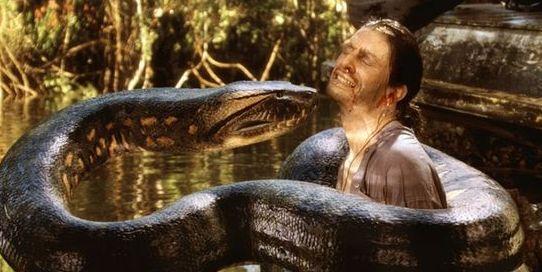 关于蛇的恐怖片十部推荐之狂蟒之灾剧照