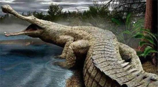 比恐龙还早的八大巨兽