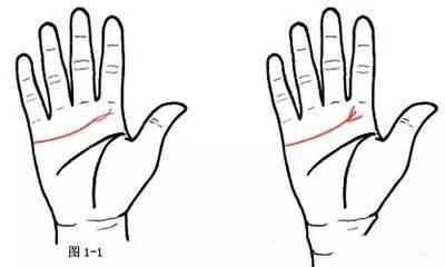 手相算命图解大全 手相看相的基本线条-图解手相算命