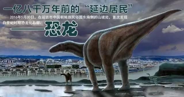 恐龙化石图片大全