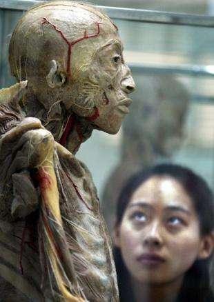 揭秘尸体加工厂是干什么的?尸体加工厂的真实尸体解剖!