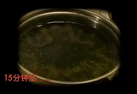 可乐煮30分钟:一团黑色的凝状固体(煮可乐过程)