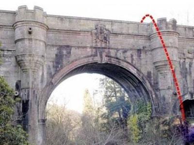 揭秘几百只狗在桥上自杀真相(全文)