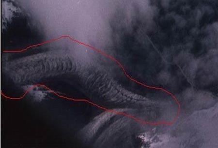 揭秘真的有龙存在吗,龙是怎么来的,龙有哪些特点