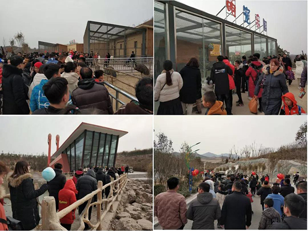 春节假期最后两日,永年游客接待量再创新高!