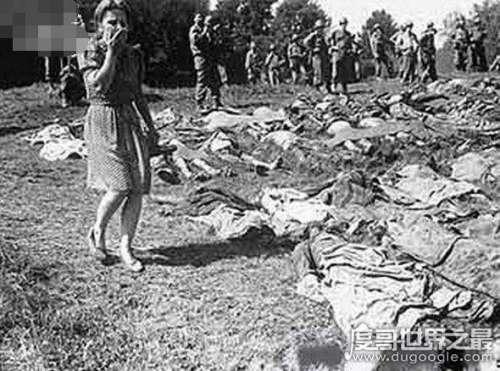 二战时期德国T-4护士组,用圣洁的双手残忍杀害10万病人