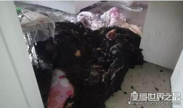 机智!家中起火女童报警,6岁女孩报警及时救了自己和3岁妹妹