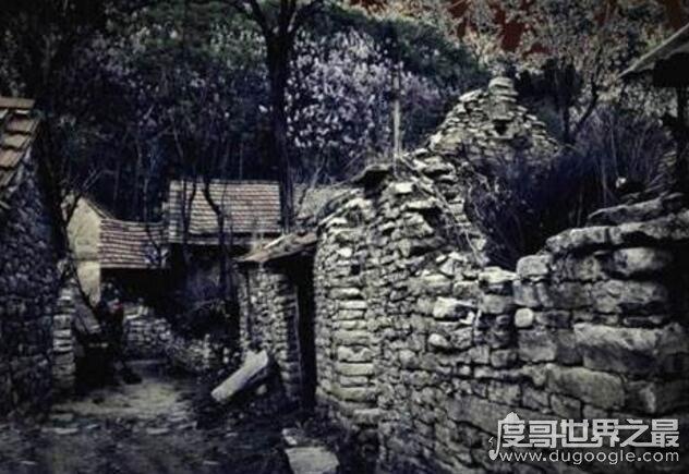 1987陕西夜狸猫事件回顾,真相至今无人知晓(疑是谣言)