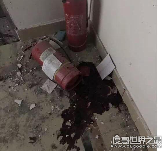 一家三口捡到不明物品爆炸,父亲眼球破裂、母亲手被炸掉