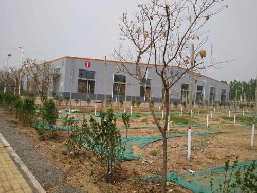 """邯郸曲周县:城管执法局绿化工程被指""""暗箱操作""""?"""