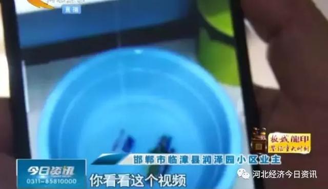 """邯郸临漳一小区新房屋里屋外在下雨,物业与开发商在""""踢皮球""""?"""