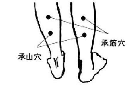 承筋穴位的准确位置图 人体穴位图