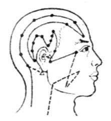 刺激人体这条经脉解决头面五官疾病 挨千刀的偏头痛