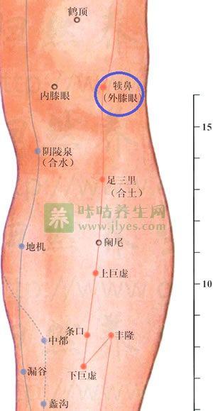 指压膝眼穴治疗膝关节疼痛