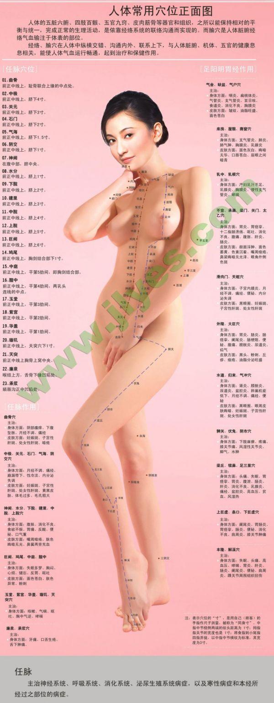 女性人体穴位高清图