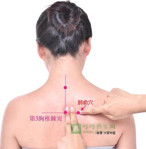 肺俞穴位位置图