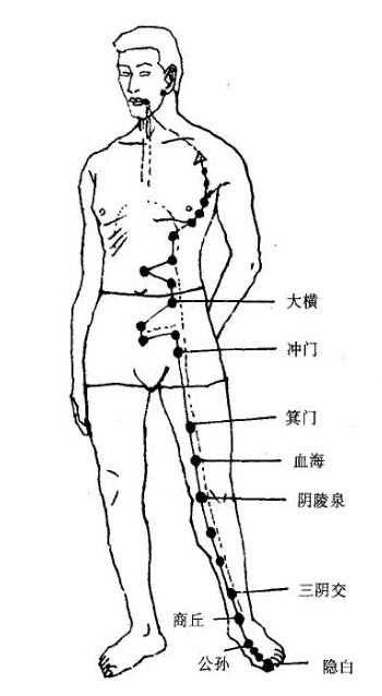 瘦小腿就是疏通脾经啊 脾经的运行图